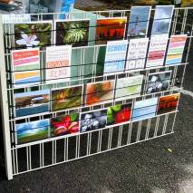 Greeting Cards for sale