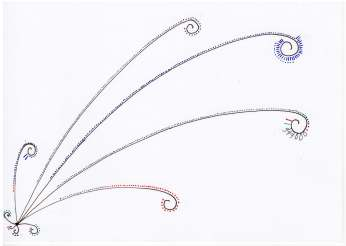 Handdrawn illustration of data, frond-like lines with curls at end and dots along length of line.